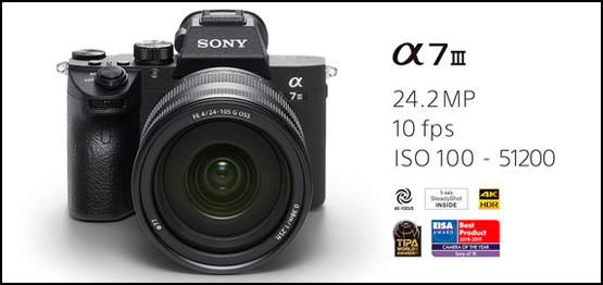 Sony A7 III + 24-105mm F4