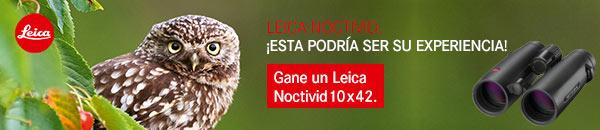 Banner Leica Noctivid