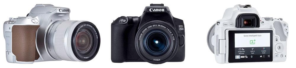Canon EOS 250D - Gama de colores