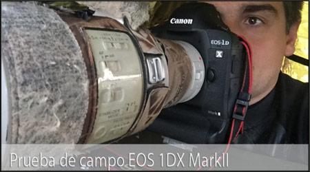 http://www.nonstophoto.com/2016/08/prueba-campo-la-1dx-markii/